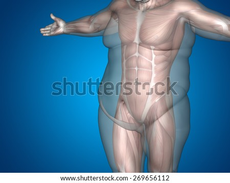 Concept or conceptual 3D fat overweight vs slim fit diet with muscles young man blue gradient background, metaphor weight loss, body, fitness, fatness, obesity, health, healthy, male, dieting, shape