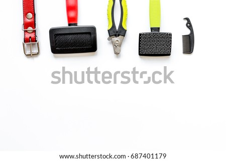 concept pet care and training on white background top view