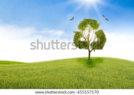 Concept recycle of life. Big alone tree in the field