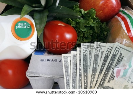 concept: small bag of groceries costing large amount of money