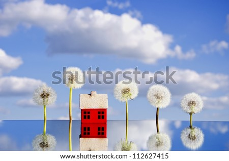 concept with house symbol on mirror and dandelion seeds