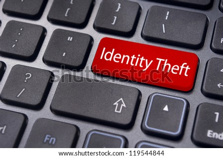 concepts of identity theft in internet.