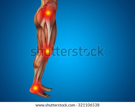 Conceptual 3d Human Man Anatomy Lower Body Or Health Design Joint