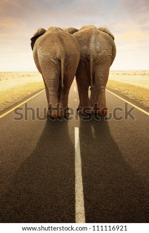 Conceptual - Going away together / travel by road (Digital composite)