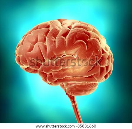 Conceptual image of a brain. 3d render illustration