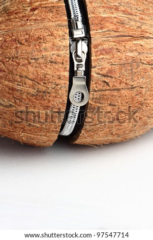 Conceptual image of a closed coconut with zipper