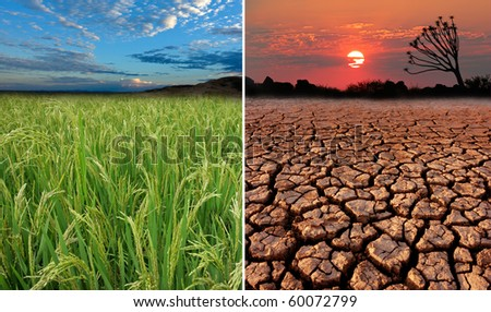 Conceptual images demonstrating the possible effect of global warming