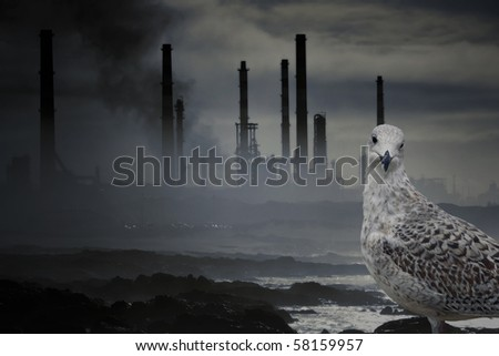 Conceptual work about nature, wildlife and pollution