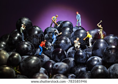 conceptual workers working on a bunch of grapes