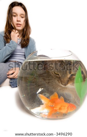 Concerned young girl watching her pet cat stare into the side of a fishbowl containing two goldfish. Cat is distorted by glass of fishbowl. Isolated on white background.
