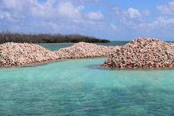 Conch Island in Anegada, British Virgin islands