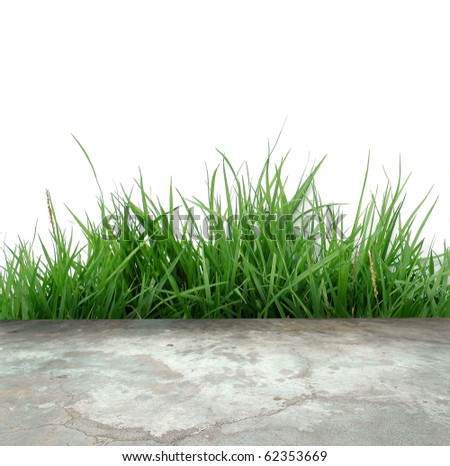 concrete floor and green grass