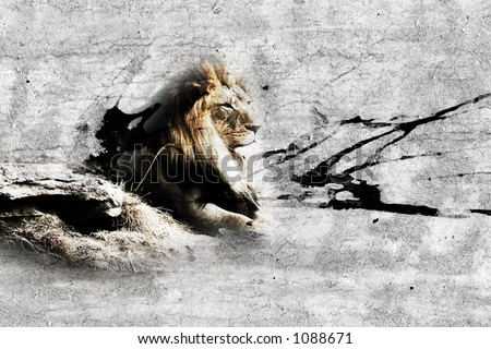 Concrete Jungle - Gritty blended image of an African Lion and an urban grunge concrete surface.