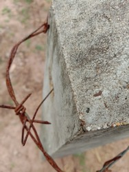 Concrete poles and barbed wire have old rust in the garden