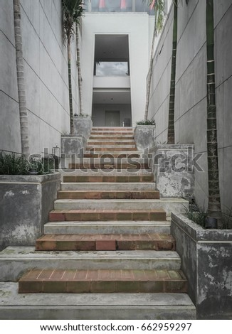 Concrete Stair Design With Palm Trees