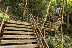 Concrete Stair in the Khao Yai Forest at Thailand