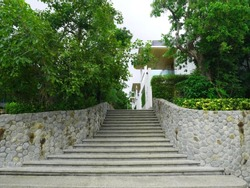 Concrete Stair Steps with stone wall.