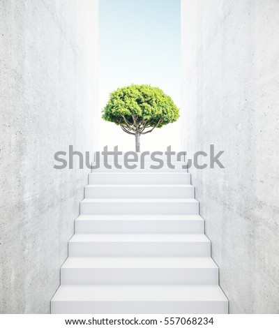 concrete stairs leading to...