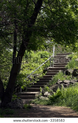 Concrete stairway with steel handrail and the end of a forest trail.