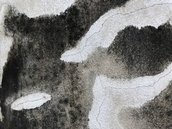 Concrete surface with cracks and black mold or black stains. Weathered outdoor cement wall background and texture. (close up, space for text)