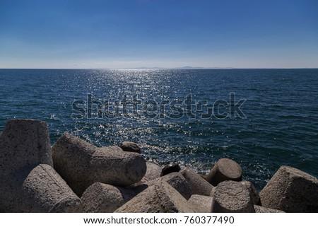 Concrete tetrapod at the coastline  #760377490