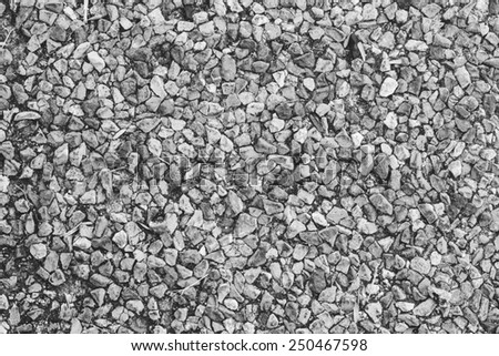 Shutterstock concrete texture and background