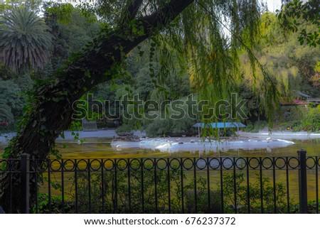 Shutterstock Condesa Ciudad de Mexico