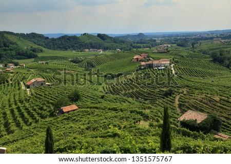 Conegliano Valdobbiadene Region, Italy, - Region in northern Italy famous for its wineries producing original Prosecco Sparkling White Wine  #1351575767