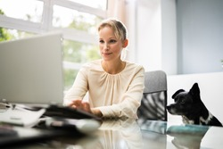 Confident Business Woman With Dog At Computer Desk