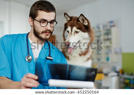 Confident veterinarian and his patient looking at x-ray result