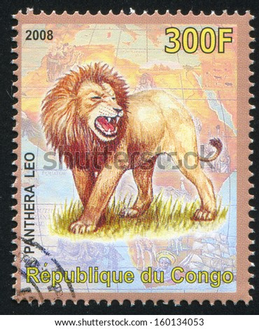 CONGO - CIRCA 2008: stamp printed by Congo, shows Lion, circa 2008