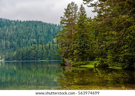 Stock Photo coniferous forest and Black lake - reflection of pine-fir trees at the mountain water surface at the clouds weather. Durmitor area at Montenegro
