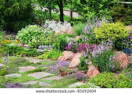 Conifers and flowering perennial plants in an alpine rock garden.