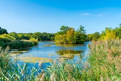 Connaught Water lake in Epping Forest in Essex, England