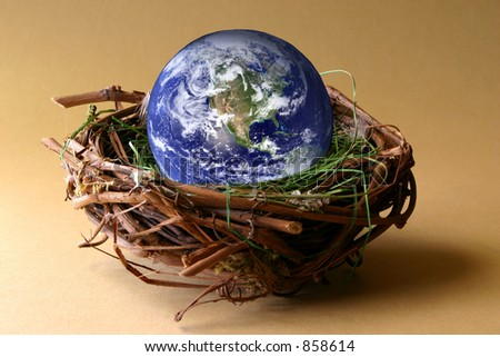Conservation:  The earth in being protected in a nest. NASA earth capture. - stock photo
