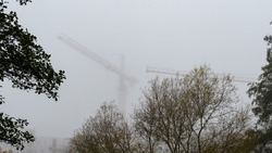 Construction cranes in the deep fog over small trees.