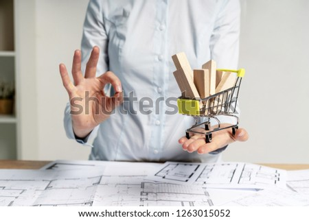 Consumer and consumerism choice and choose concept. Confident lady in her formal wear stand inside bright workstation demonstrate ok-sign. She hold shopping cart object with wooden element in hand