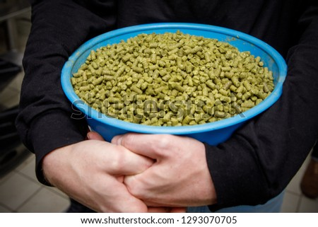Container with granulated hops in the hands of brewer. Ingredient for beer. Fragrant hop granules.