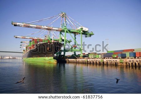 Containers, cranes and ships in warm late afternoon light.