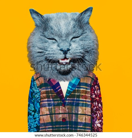 Contemporary art collage. Homeless cat. Minimal fashion style