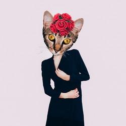Contemporary art collage. Retro Lady  Cat. Minimal design Flat lay