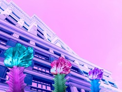 Contemporary collage. View of multi-colored cacti against the background of a purple multistory building against a pink sky. Art, architecture concept.
