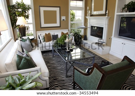 Contemporary luxury home living room with stylish decor.