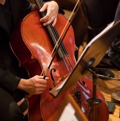 Contrabass professional player with symphony orchestra performing in concert on background.