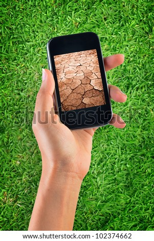 Contrast of green grass and dry soil