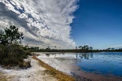 Contrasting skies as a bank of clouds moves over the Gator Lake in the Jonathan Dickinson Florida state park, reflecting in the water.