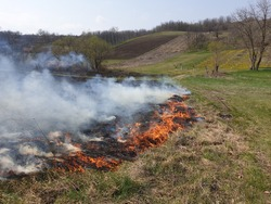 Controlled burning of vegetation, smoke and fire