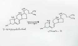 Conversion reaction from Cholesterol molecule to Vitamin D. Skeletal formula