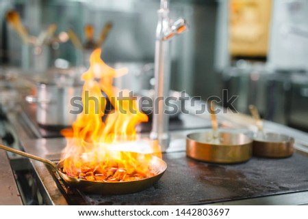 cook cooks in a restaurant #1442803697