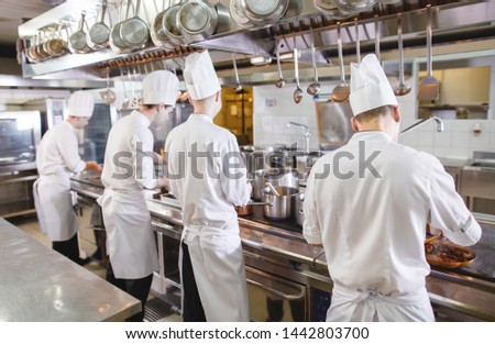 cook cooks in a restaurant #1442803700